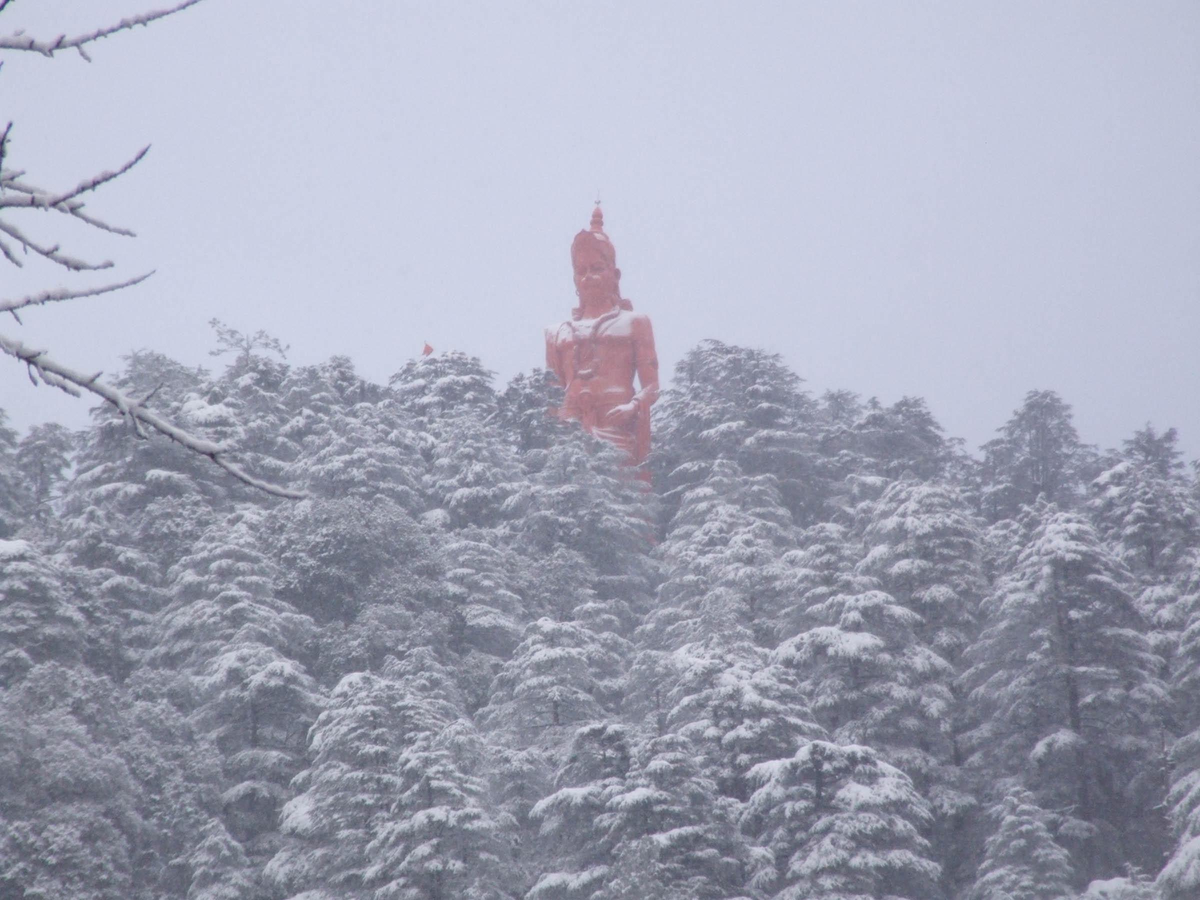 snow forecast in shimla